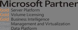 ms_partner_logo